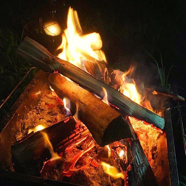 ああ〜〜焚き火したい欲がああああ〜今月末29.30日大津谷でキャンプ予定良かったら遊びにきてね^_^おもてなししますよー #キャンプ #キャンプファイヤー #冬キャンプ #キャンプ好きな人と繋がりたい #アウトドア #アウトドアライフ #アウトドア好きな人と繋がりたい #アウトドア好き #大津谷公園キャンプ場 #焚き火 #焚き火台 #焚き火したい #スノーピーク #スノーピーク焚き火台 #レザクト #leathact